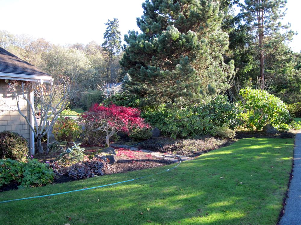 Lawn & Garden Design